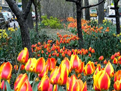 Spring Flowers New York City Clip Art