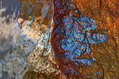 باکتریهایی که رنگینکمان ساختهاند