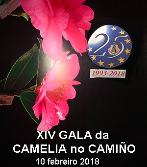 XIV Gala Camelia