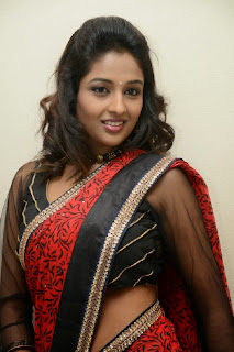 Actress Amitha Rao Pictures in Saree at Chandamama Kathalu Movie Press Meet 0043