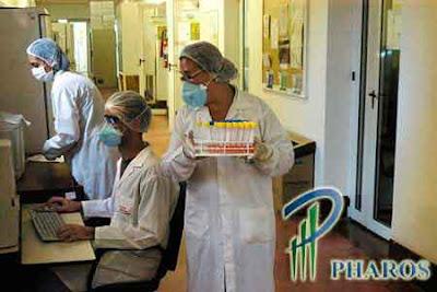 job vacancy pharos