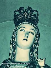 SANTA MARIA DEGLI ANGELI ALLA PORZIUNCOLA A. D. 2012