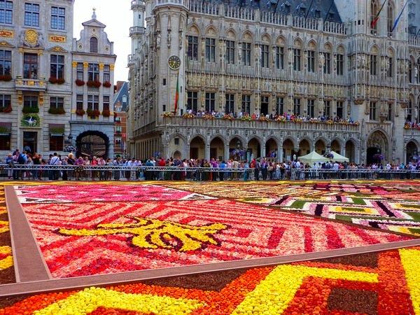 Kwiaty Bruksela 2012