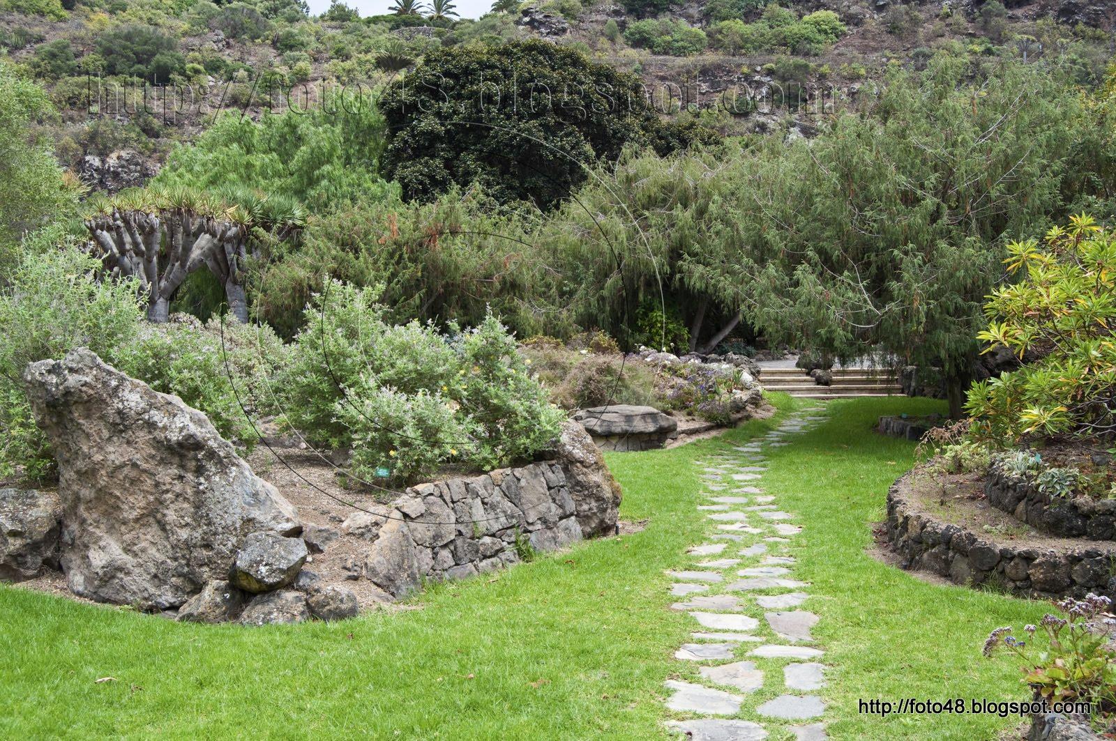 Foto48 foto jard n canario for Jardin canario