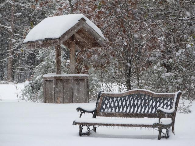 Ozarks snow scene
