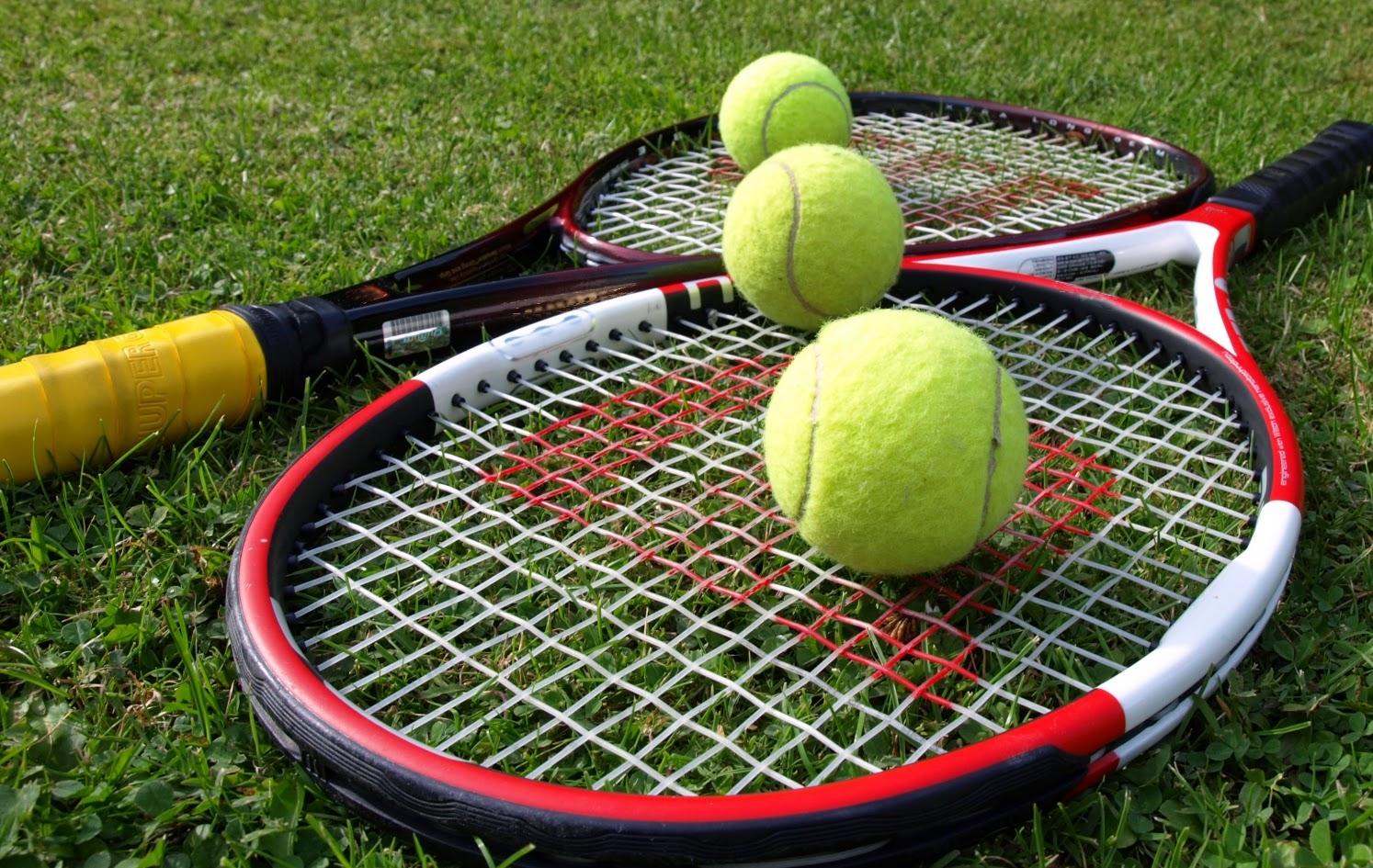 cá cược quần vợt