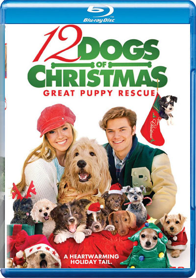 Filme Poster 12 Dogs of Christmas: Great Puppy Rescue BDRip XviD &amp; RMVB Legendado