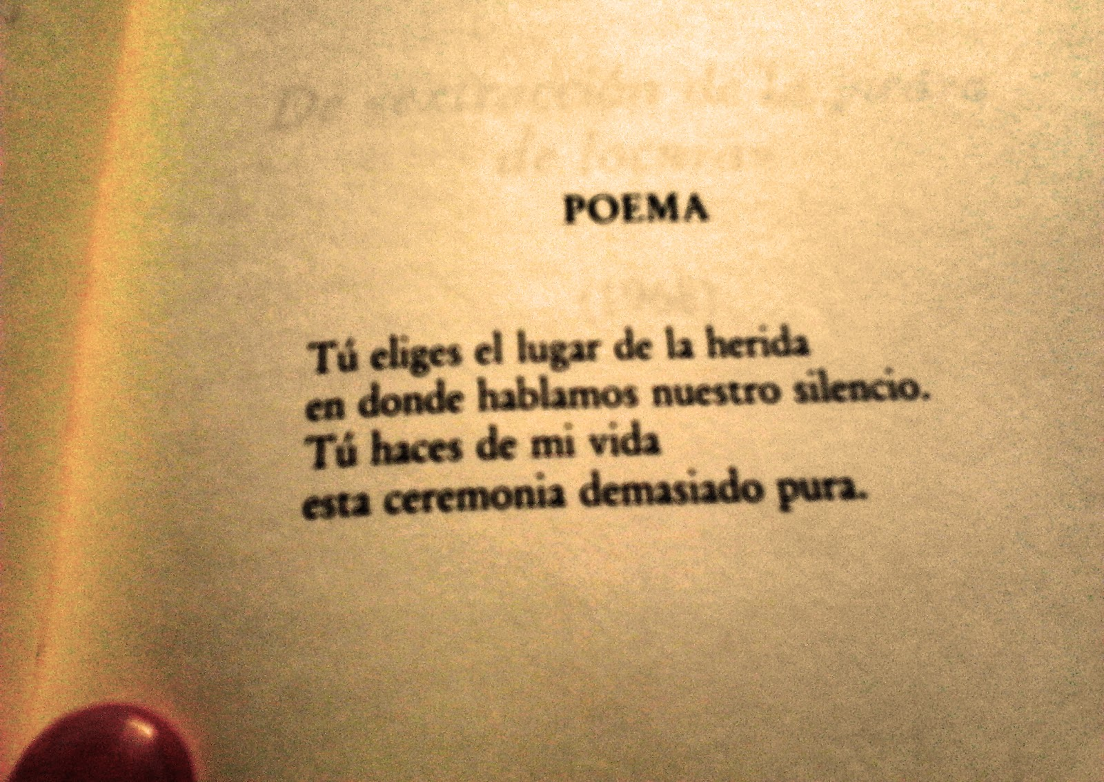 Alejandra Pizarnik Textos Y Poemas | apexwallpapers.com