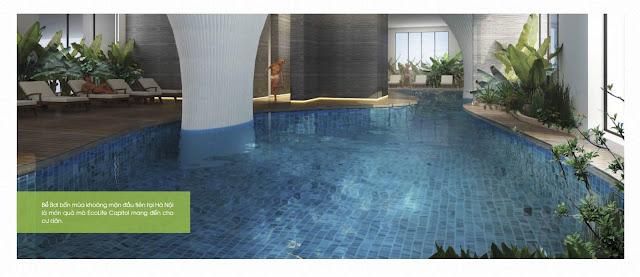 Bể bơi khoáng mặn tại Ecolife Capitol
