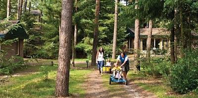 Landal Ferienpark Coldenhove