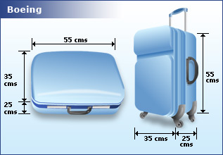 Handling carry-on (hand) luggage at Indian airports - PraveenSandbox