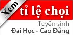 Ty le choi DH 2010, Ty le choi Dai hoc 2011