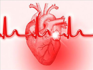 scientists create beating heart tissue from skin cells