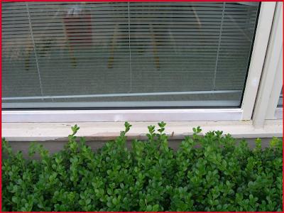 Pozzi window replacement