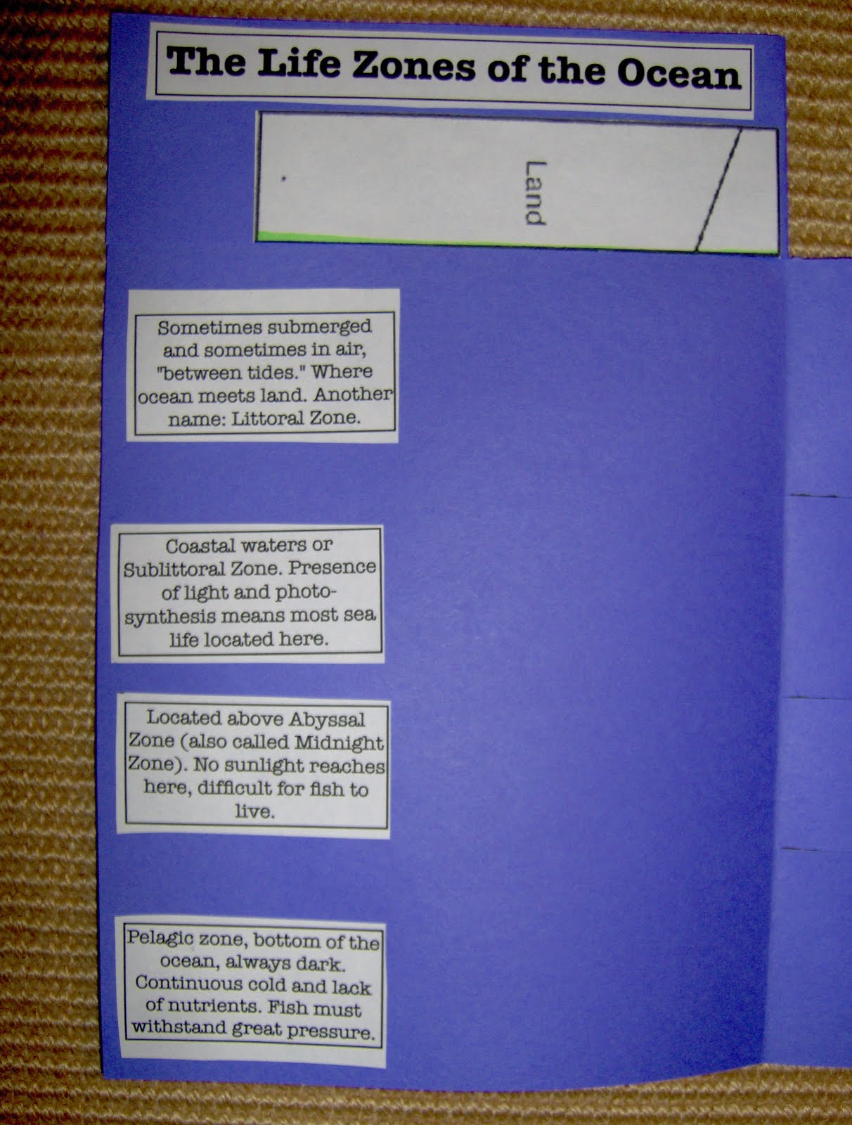 Bookish Ways in Math and Science: Unit Resource Portfolio: Oceans