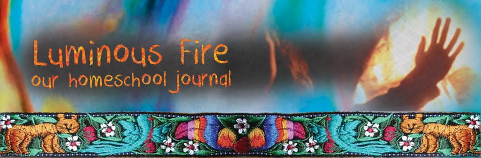 Luminous Fire - our homeschool journal