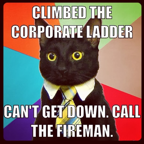 Business Cat Birthday Meme