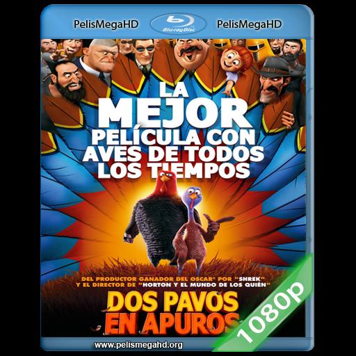 DOS PAVOS EN APURO (2013) FULL 1080P HD MKV ESPAÑOL LATINO