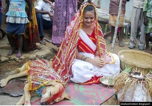 bldirgantara.blogspot.com