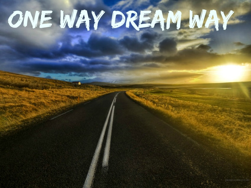 ONE WAY DREAM WAY