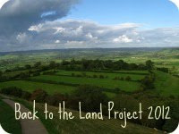 A Project for 2012