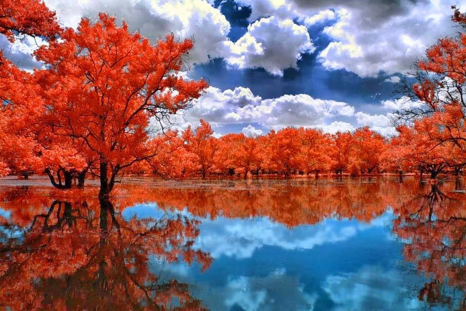 Worlds Most Beautiful Nature Reflection Photography Wallpapers