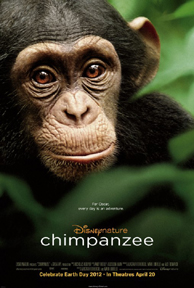 Chimpanzé – Legendado