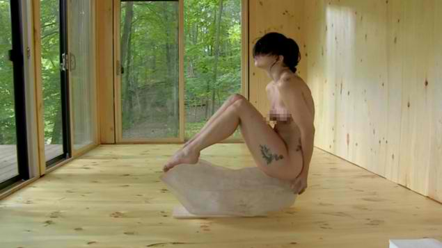 Lady Gaga strips down naked for Marina Abramovic's Kickstarter art project