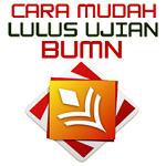 Lulus Ujian BUMN.