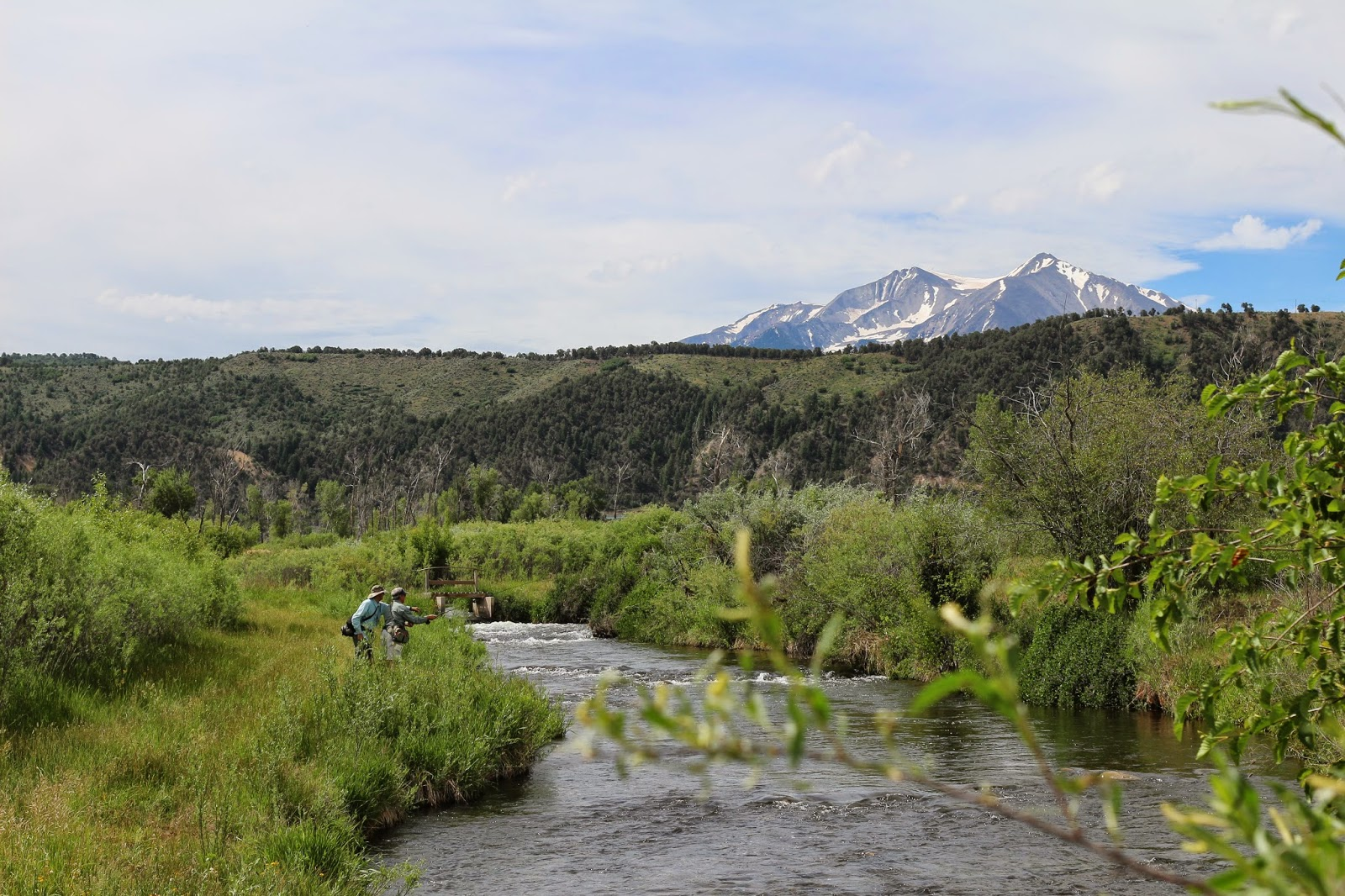 Fly+fish+the+Roaring+Fork+River+in+Colorado+with+Jay+Scott+Outdoors+9.JPG