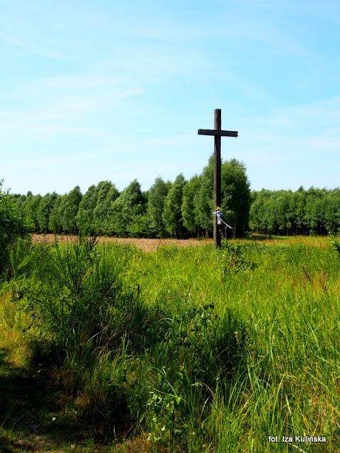 podlasie , łąka , wycieczka , rośliny łąkowe , flora , pola , rozstaje dróg , przydrożny krzyż