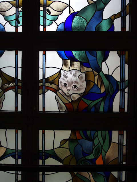 Just in Style siauliai lithuania the cat museum