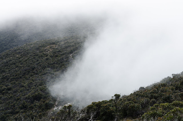 low cloud near mount william