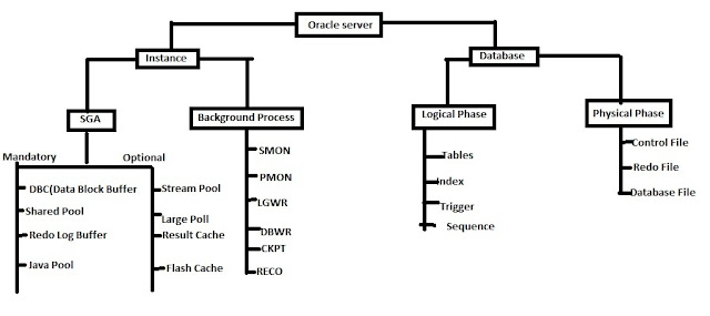 Oracle Database Server