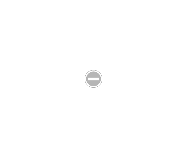 ricci di cioccolato e biscotti senza latte e uovo, ovvero la rivisitazione del salame di cioccolato per gli allergici!