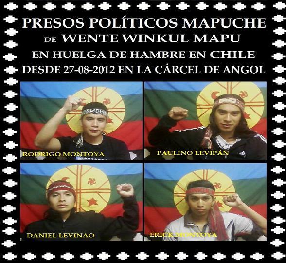 huelga de hambre presos politicos mapuche en angol-2012