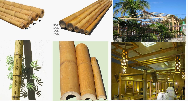 20.20 x 20 Bamboo Poles Natural Black 200 Poles Tools & Home ...