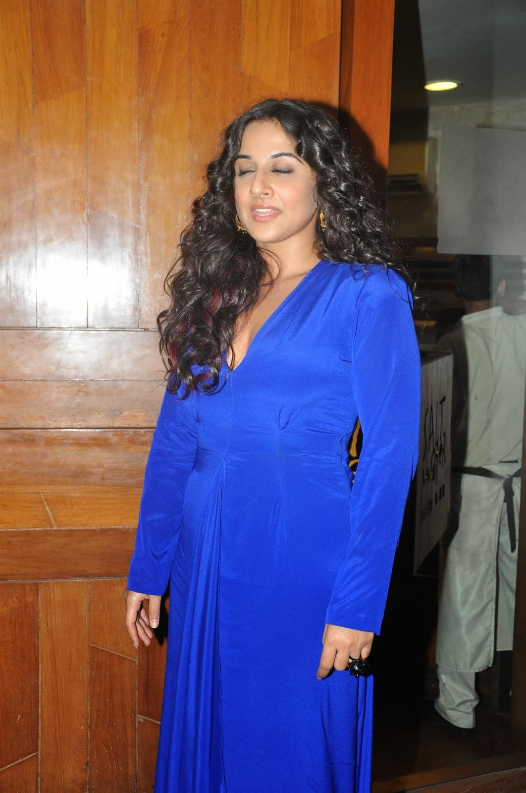 http://1.bp.blogspot.com/-pvnW1o3xGgo/Uu0lZOyiElI/AAAAAAABo_Q/oBxaNy1UEmw/s1600/Vidya-Balan-And-Dia-Mirza-at-Bobby-Jasoos-Wrap-Up-Party-26.JPG