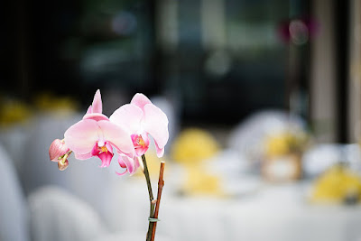 Vibrant purple orchids adorned the reception tables l Lauren Lindley Photography l Hidden Valley Country Club l Take the Cake Event Planning
