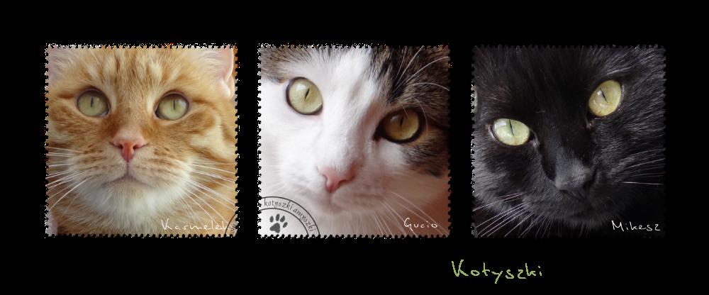 Kotyszki