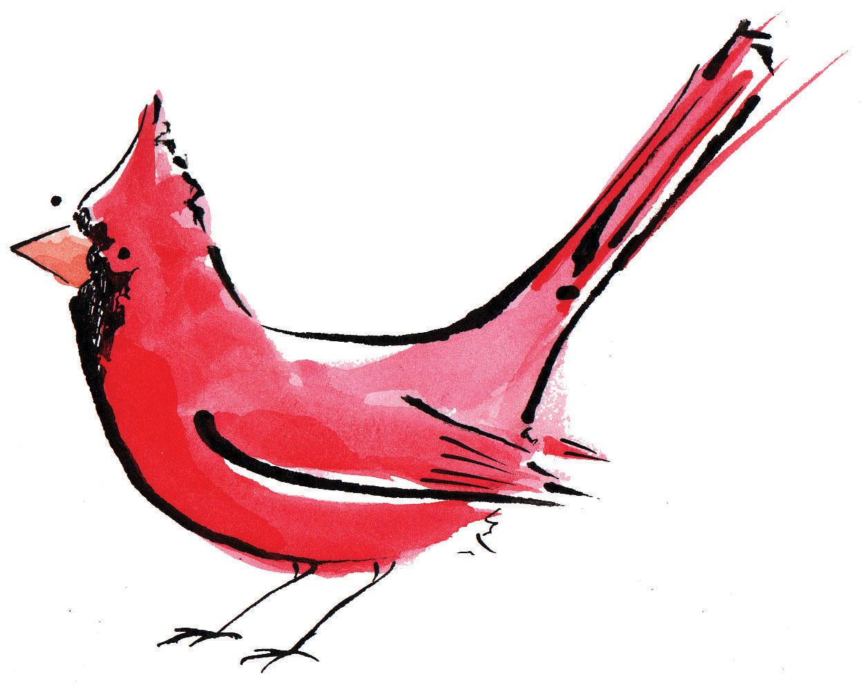 how to draw a bird tattoo