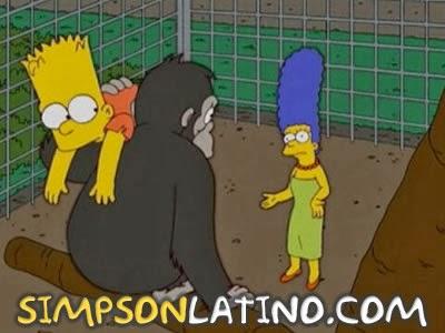 Los Simpson 17x14