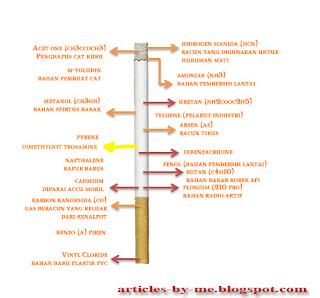 Rokok Dan Inhalansia (Berbahayanya Rokok)