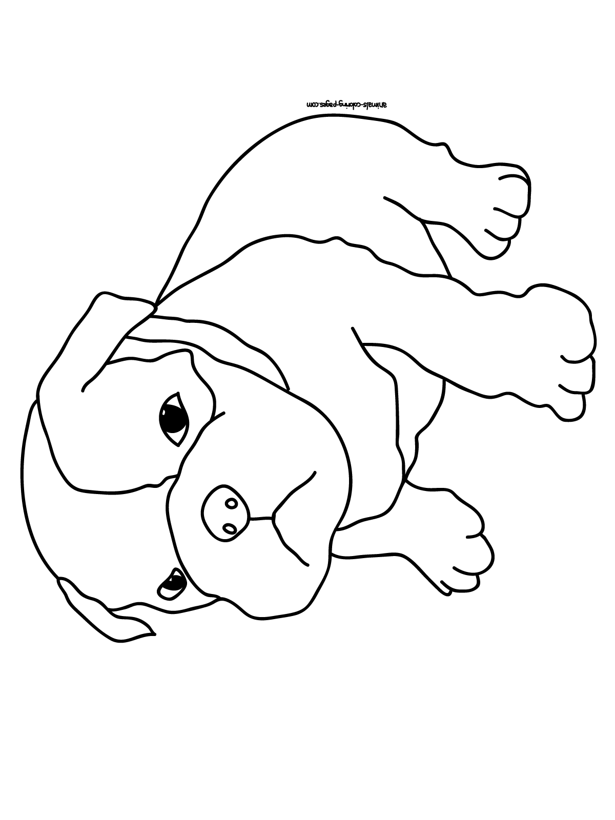 coloring pictures of puppies