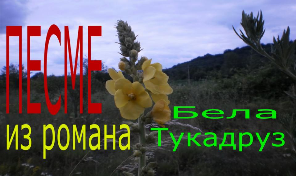 Мирослав Лукић - Бела Тукадруз