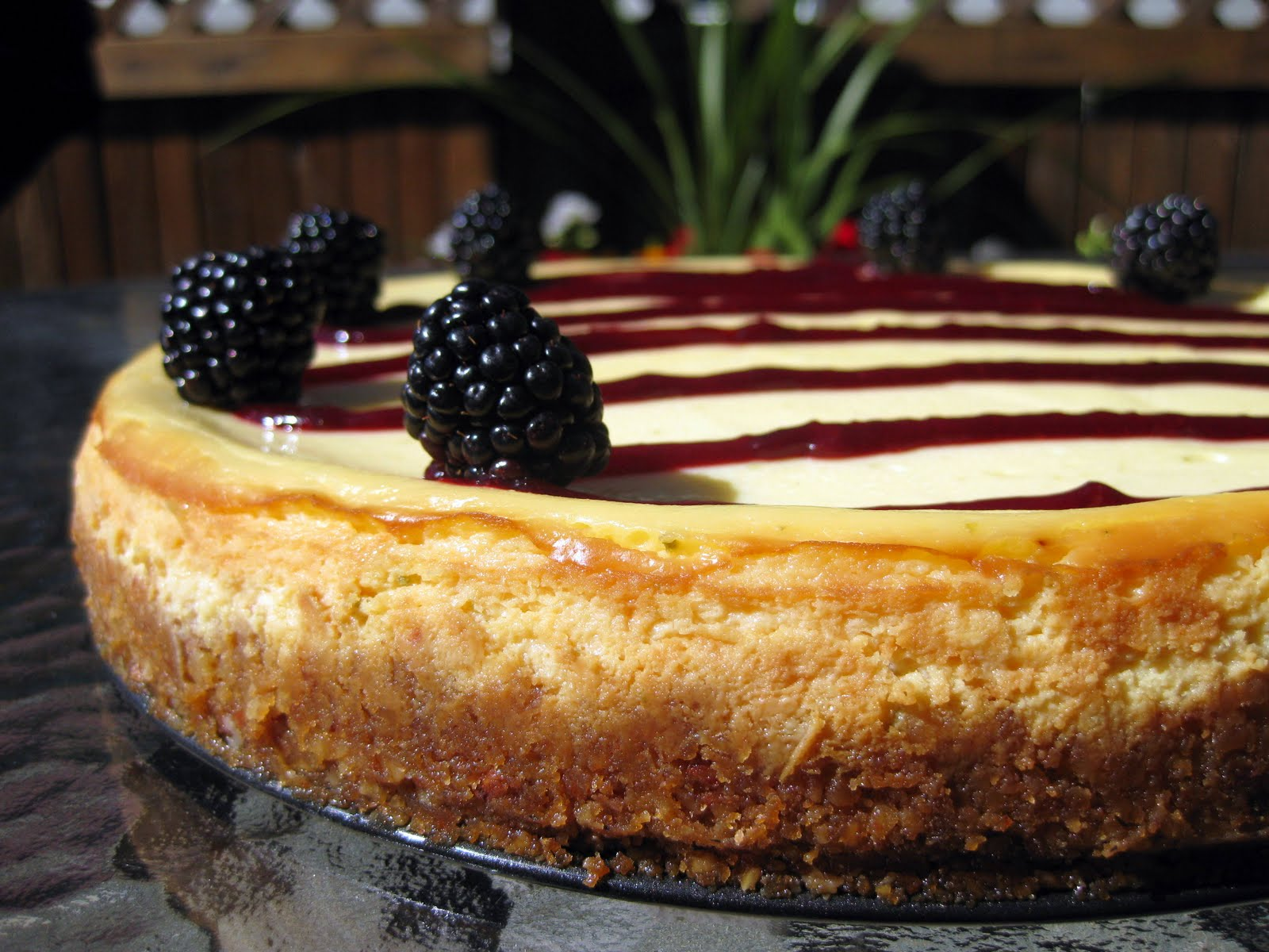 Food for Thought: Lime Cheesecake with Blackberry Sauce