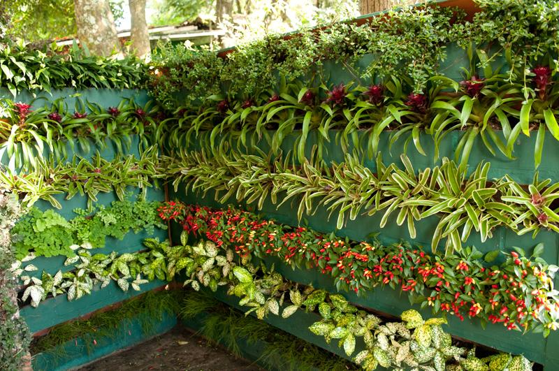 ideias jardins verticais : ideias jardins verticais:Arquitetando Idéias: Jardins Verticais são tendência.