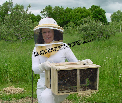 Women holding two pacakges of honey bees image