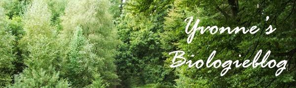 Yvonne's Biologieblog