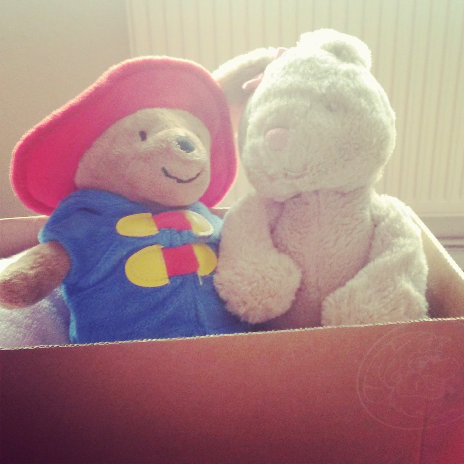 Paddington and cuddly rabbit